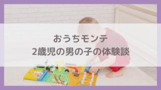 おうちモンテッソーリ2歳児の体験談!